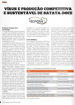 Vírus e produção competitiva e sustentável de batata-doce