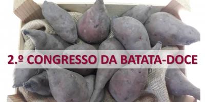 1.ª REUNIÃO PREPARATÓRIA DO '2.º CONGRESSO DA BATATA-DOCE'