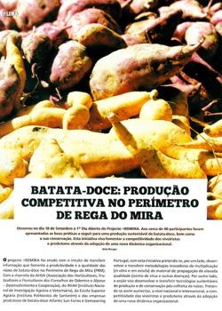 Batata-doce: produção competitiva no Perímetro de Rega do Mira