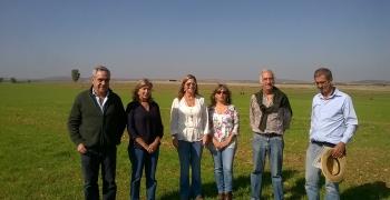 Analise dos resultados da sementeira das misturas biodiversas para a produção das forragens