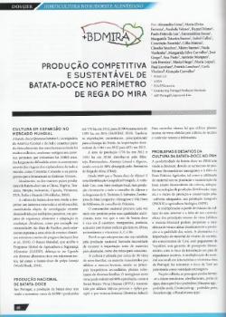 Produção competitiva e sustentável de batata-doce no perímetro de rega do Mira