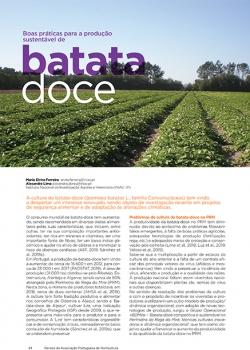 Boas práticas para a produção sustentável de batata-doce
