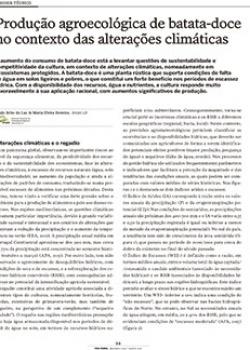 Produção agroecológica de batata-doce no contexto das alterações climáticas
