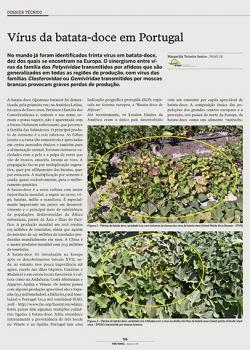 Vírus da batata-doce em Portugal